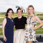 Limerick Racecourse - Twilight Racing