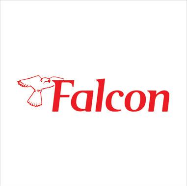 logo_falcon