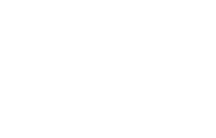 3 Mobile